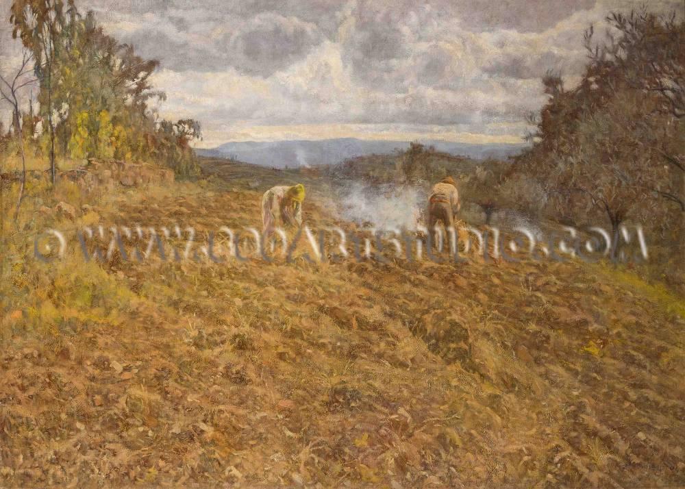 Ludovico Tommasi - Male erbe