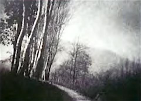 Stefano Bricarelli - Arcadia e Apocalisse