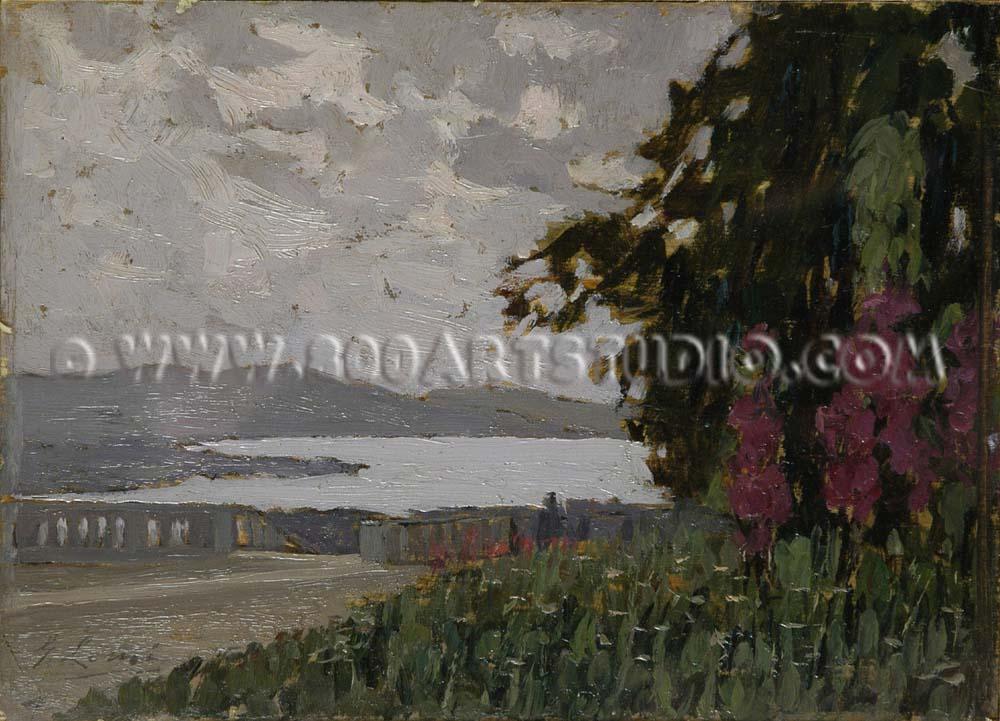 Giovanni Lomi - Lago di Varese