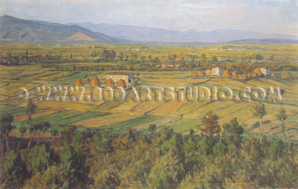 Luigi Gioli - Il Pian di Pisa